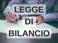 11/01/2019 - Legge bilancio 2019: le novità finanziarie per gli enti territoriali (II parte)