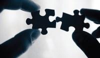 11/06/2021 - Avvalimento – Impresa ausiliaria – Dichiarazione non veritiera – Possibilità di sostituzione – Principio di proporzionalità