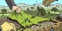 15/06/2021 - Occupazione di un terreno (strada) senza titolo e obblighi del Comune